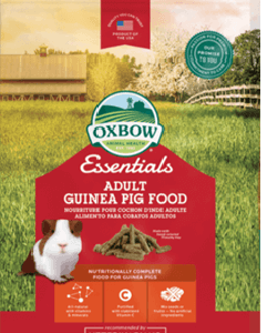 Oxbow adult guinea pig food