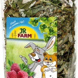 jr farm berry leaves